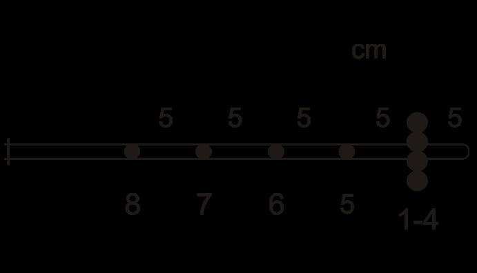Modelo Radial Esofágico.